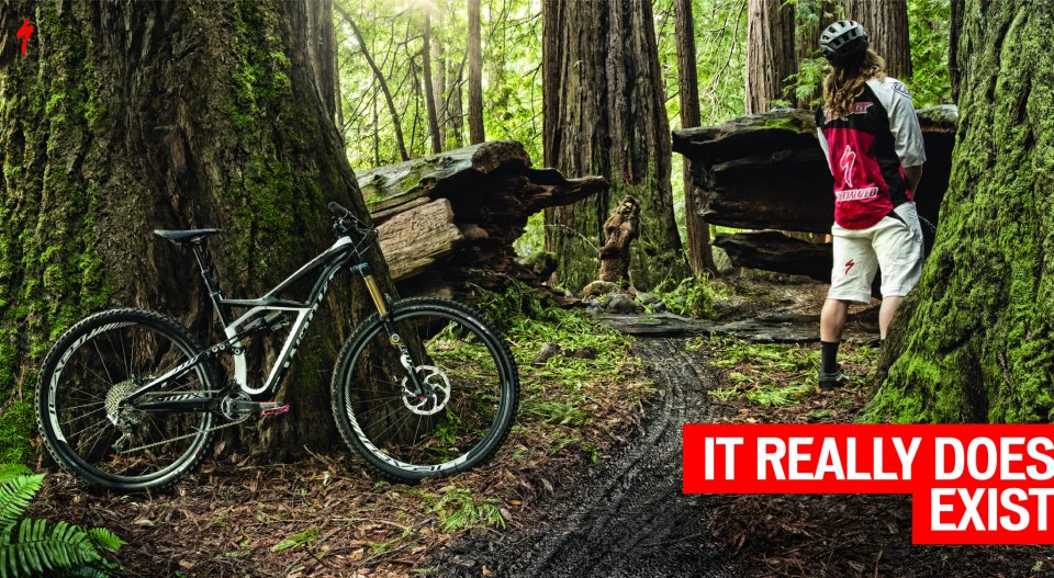 specialized enduro 29 reveal