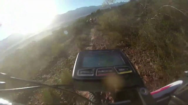 Antelope of the day – Cape Epic 2013