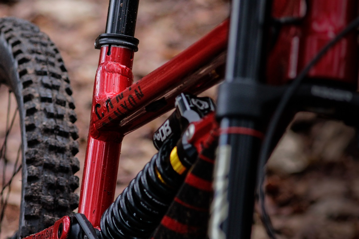 Hot or not: Canyon Torque DHX