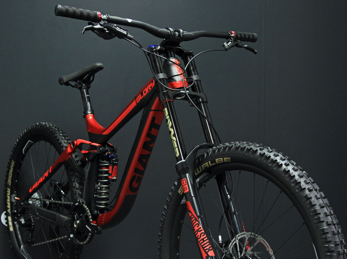 giant glory carbon