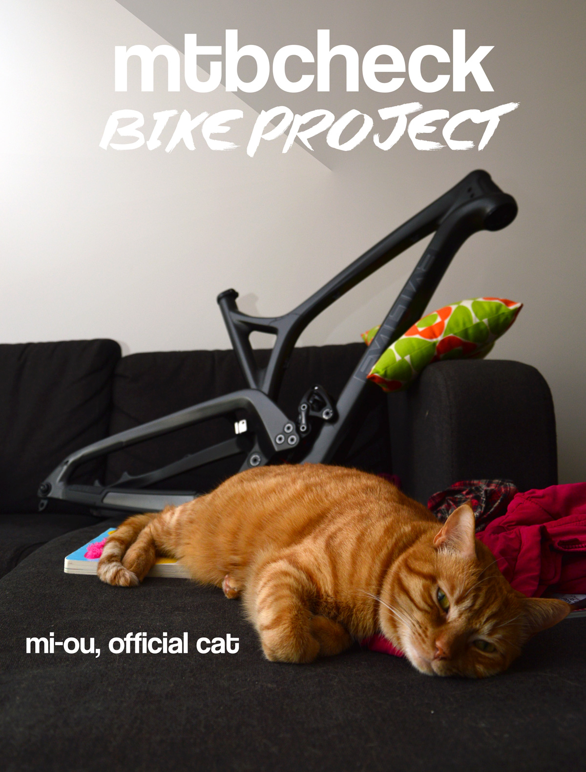 mi-ou-official-cat-mtbcheck-bike-project